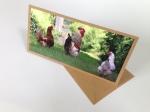 original photo card of hens